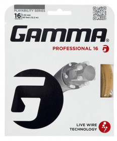 Gamma Livewire Professional 16 String