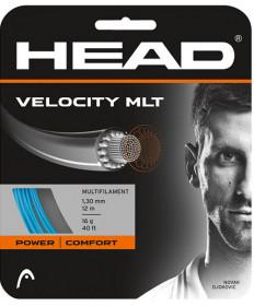 Head Velocity MLT 16 String Blue 281404-BL16