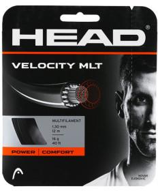 Head Velocity MLT 16 String Black 281404BK16