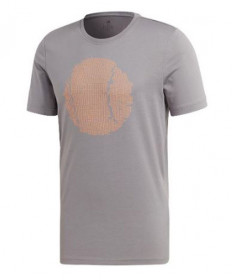 Adidas Men's Flushing GFX T-Shirt-Grey EJ6336