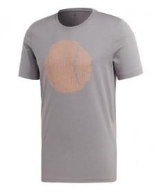 Adidas Men's Flushing GFX T-Shirt-Grey EJ6336
